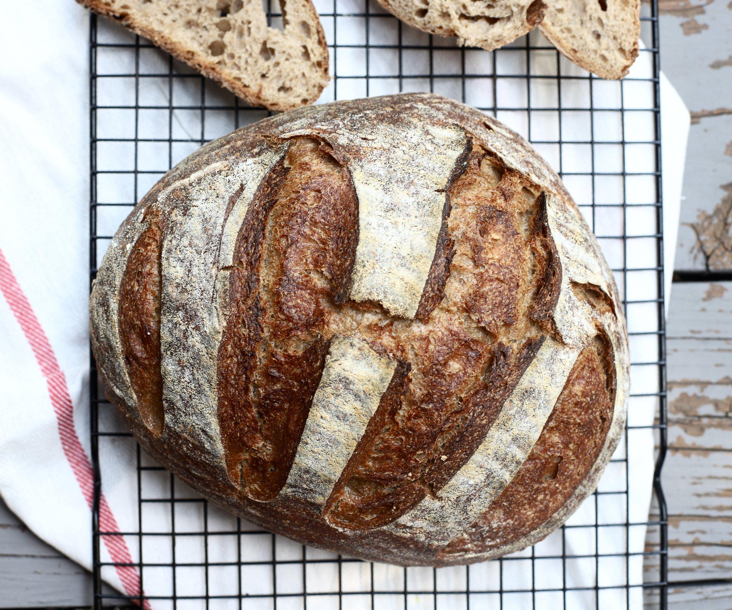 Beginner's Guide to Sourdough Bread