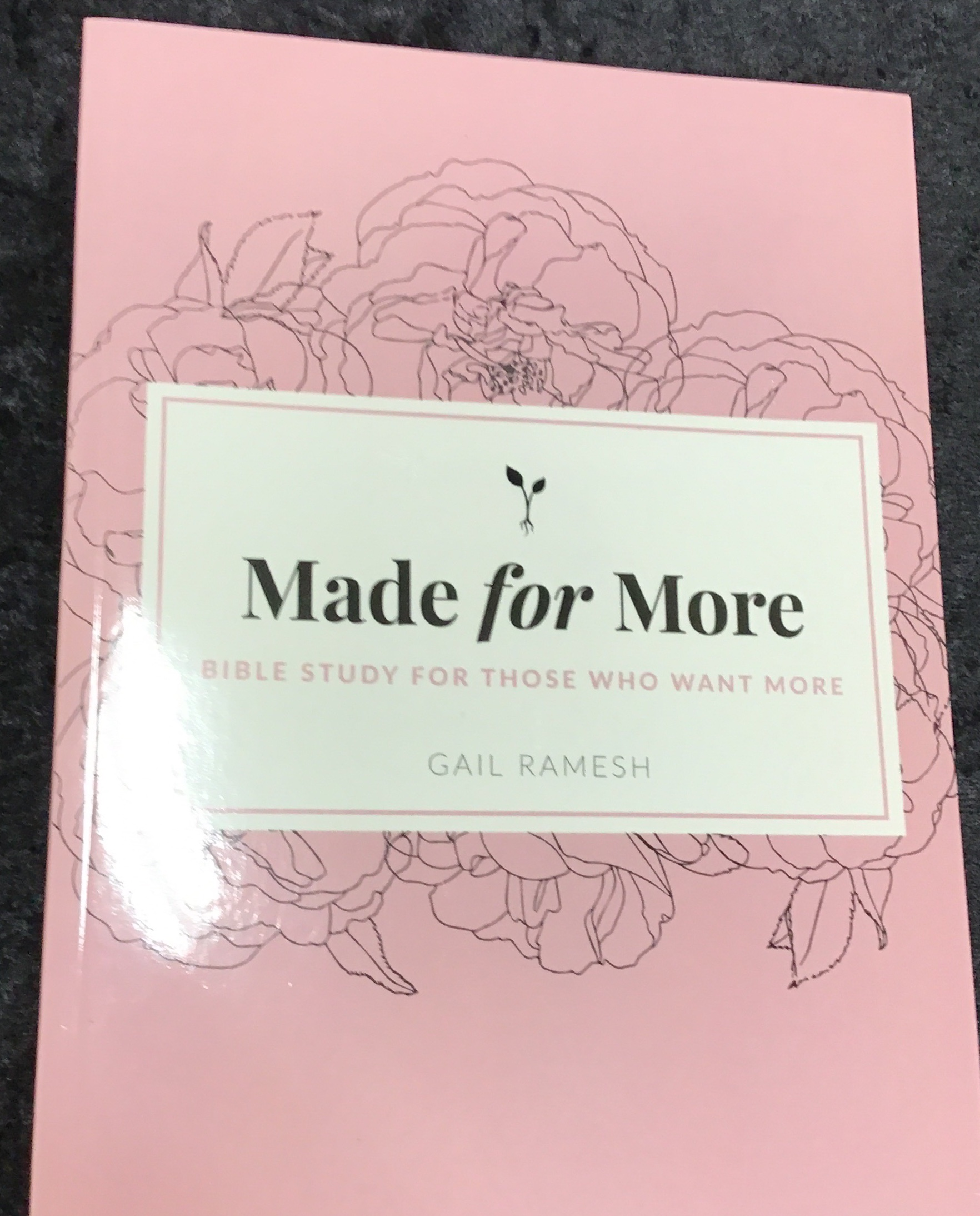 Made for More - Bible Study