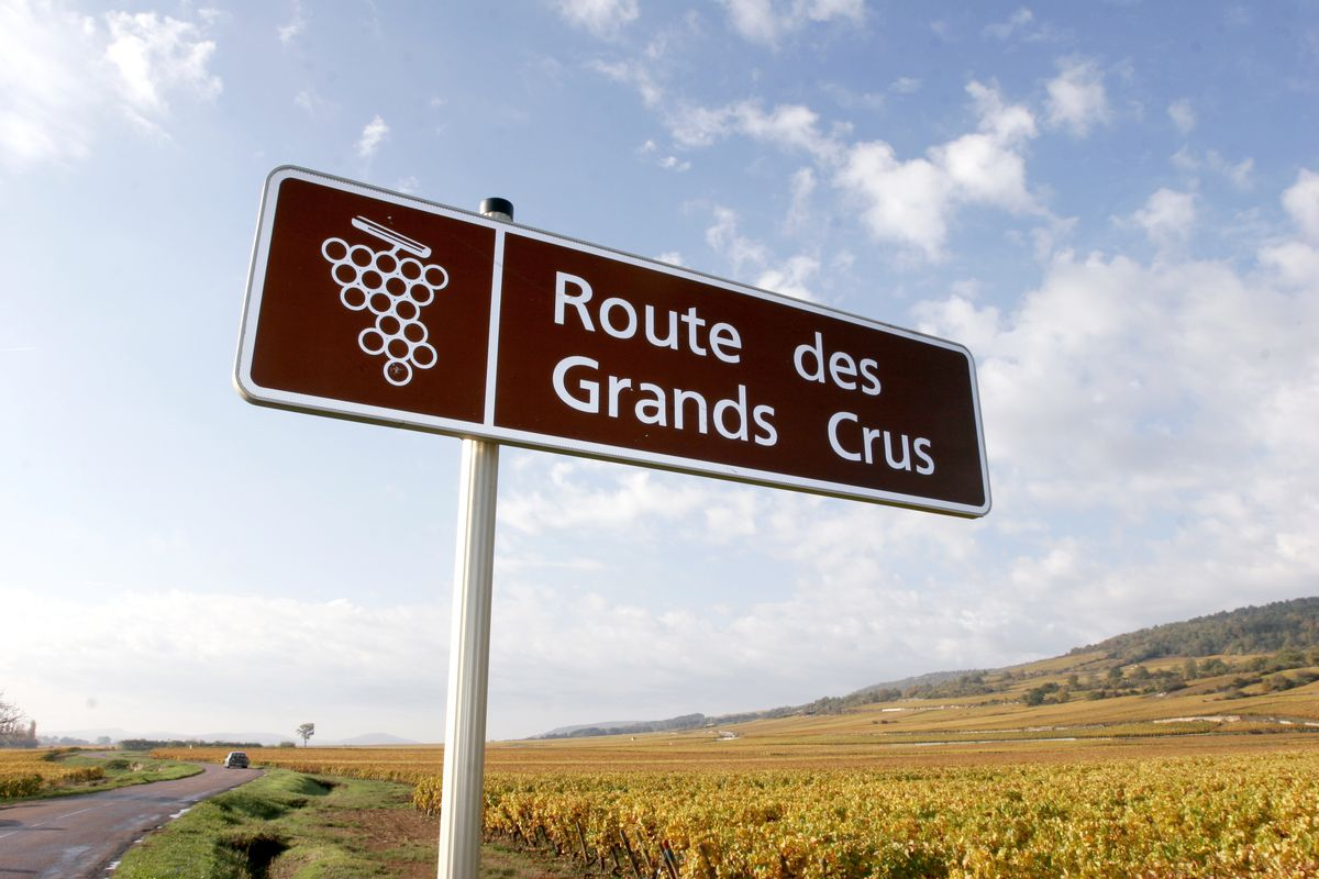 route_des_grands_crus.jpg