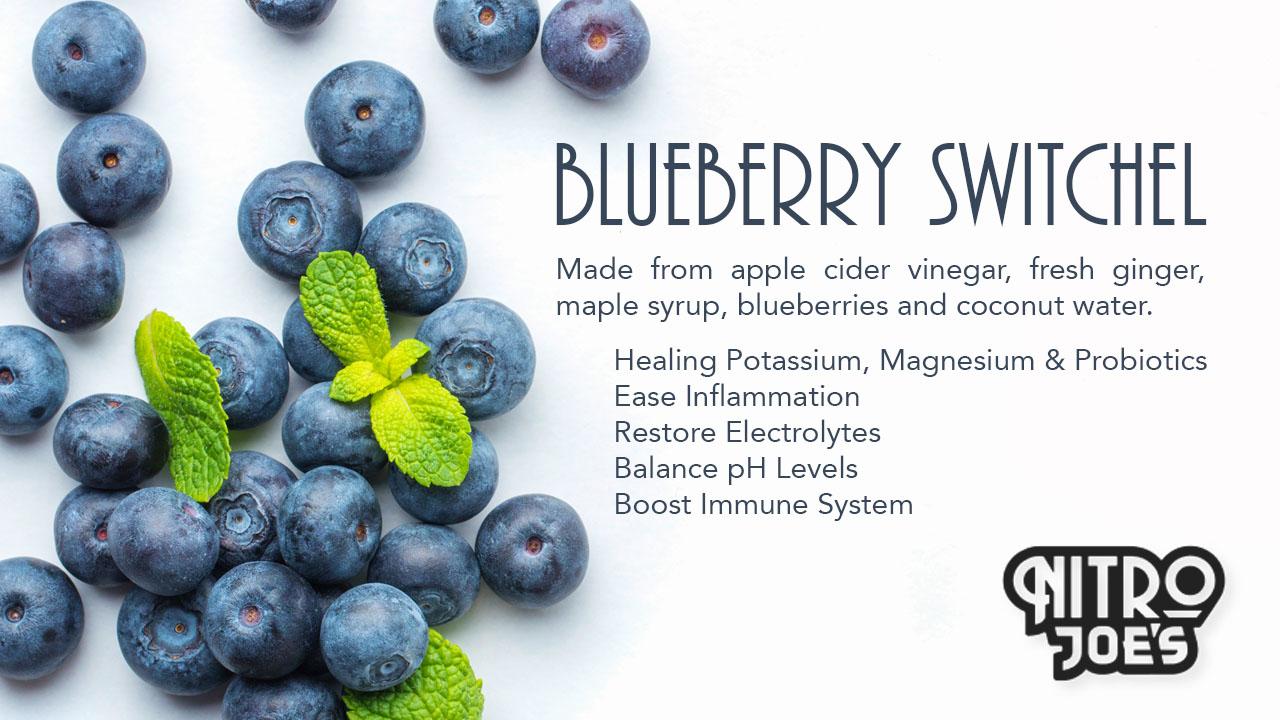 Blueberry Switchel .jpg