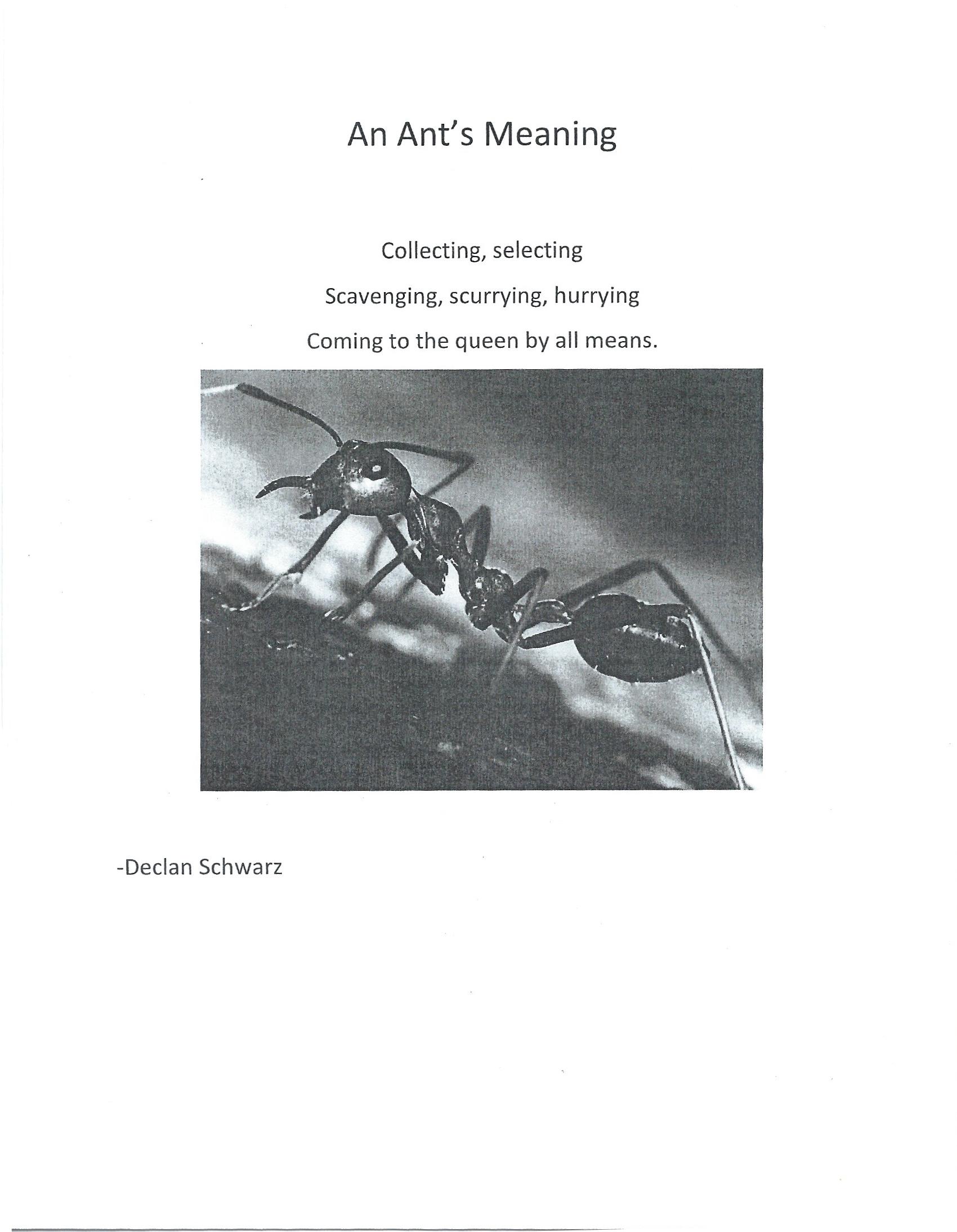 TN Poetry Workshop Poems 1.jpg