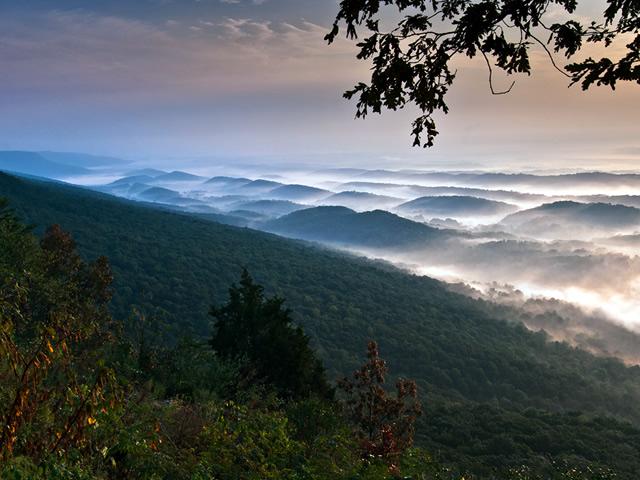 Cumberland Plateau No 6.jpg