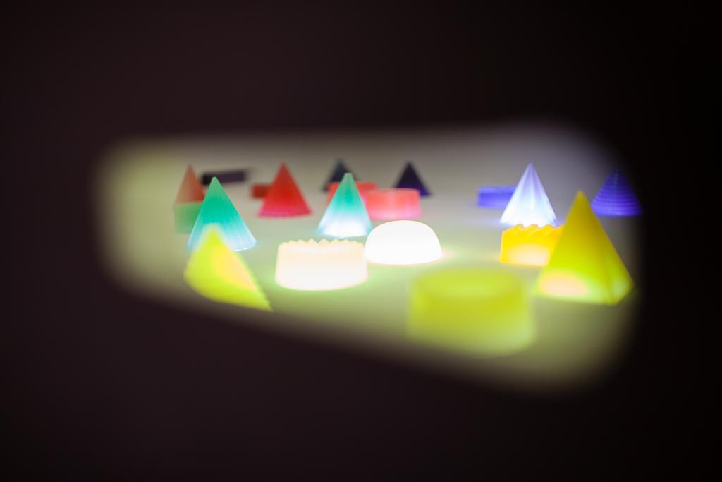 jelly safari - © vinciane verguethen -7733.jpg