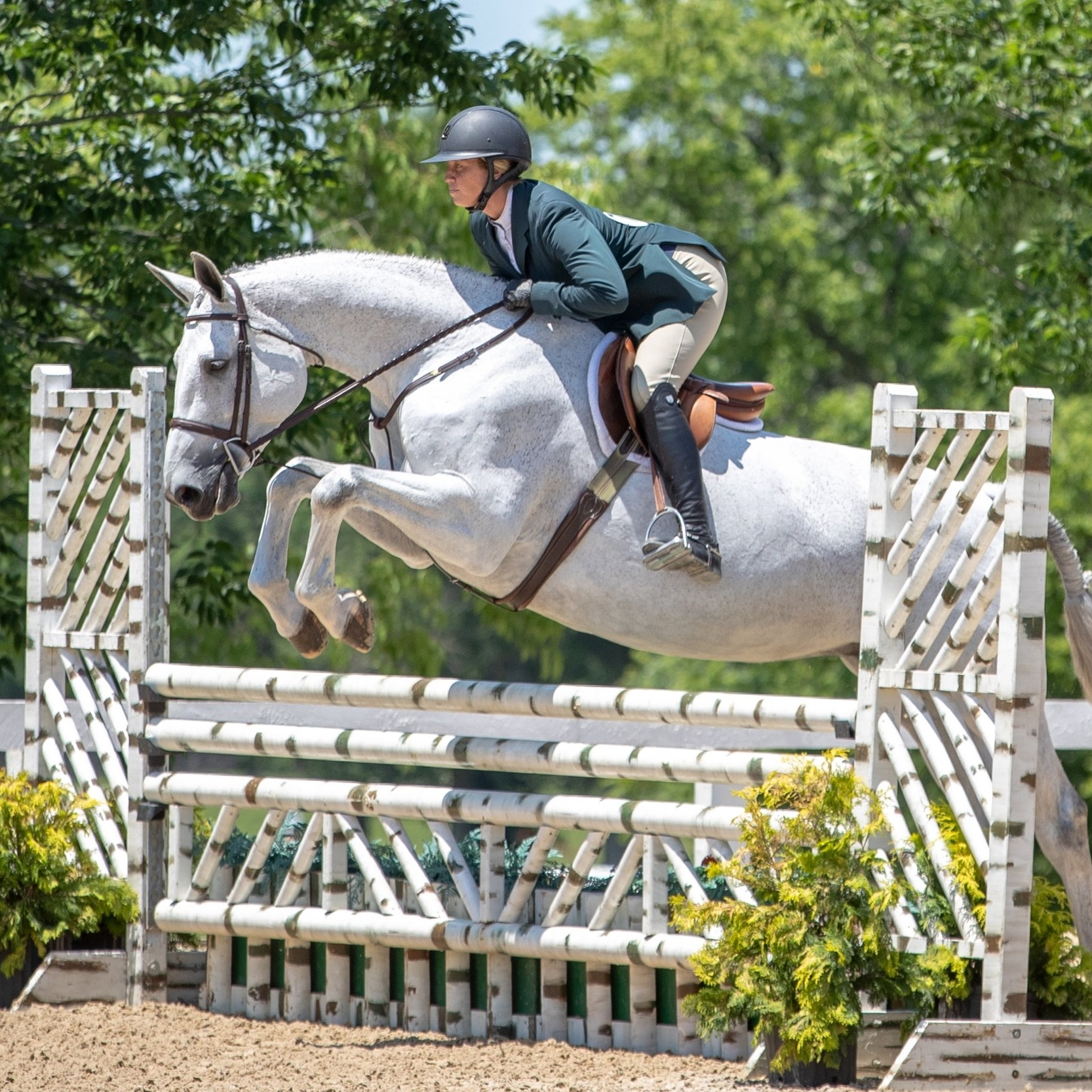 2018-06-21-1326-caitlyn_shiels_and_cakewalk_by_fine_art_horses_cp2_1973.jpg