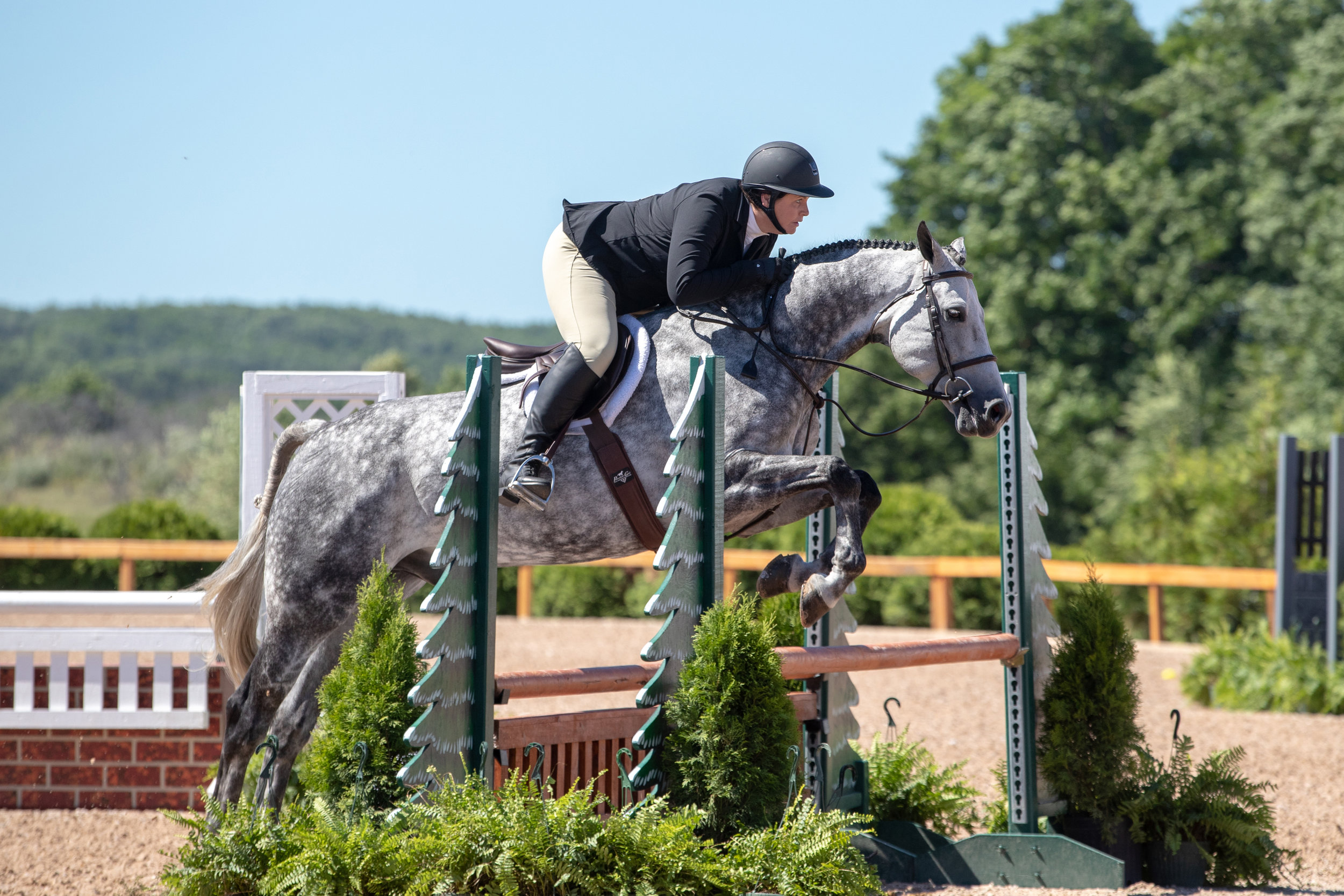Katie Hawkins and Gray Street took top 10 finishes in the Adult Amateur 18-35 Hunters!