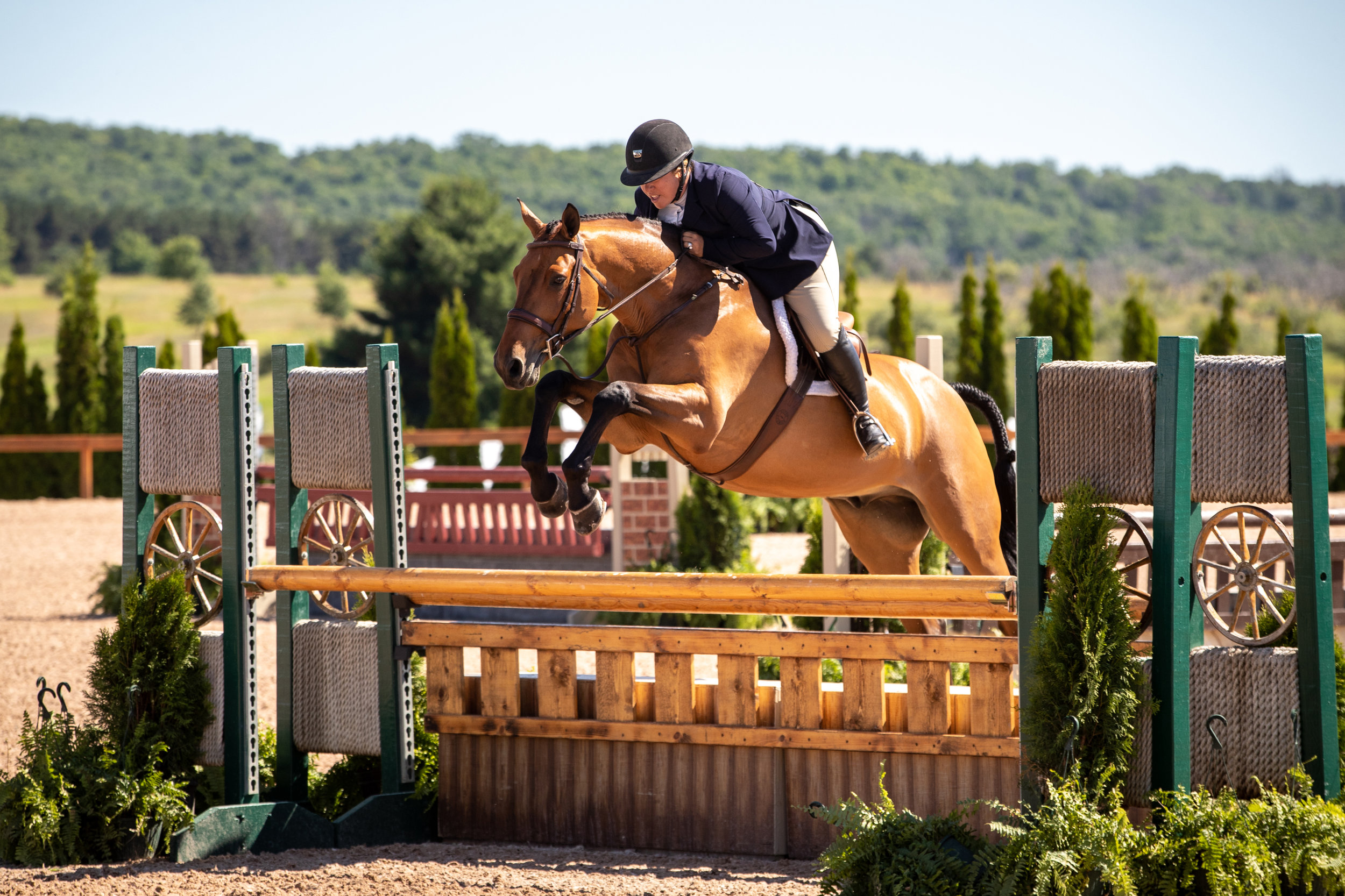 Michelle Durpetti and Lucca had awesome rounds all weekend in the Amateur-Owner Hunters, with ribbons including a second over fences and a fifth in the classic!