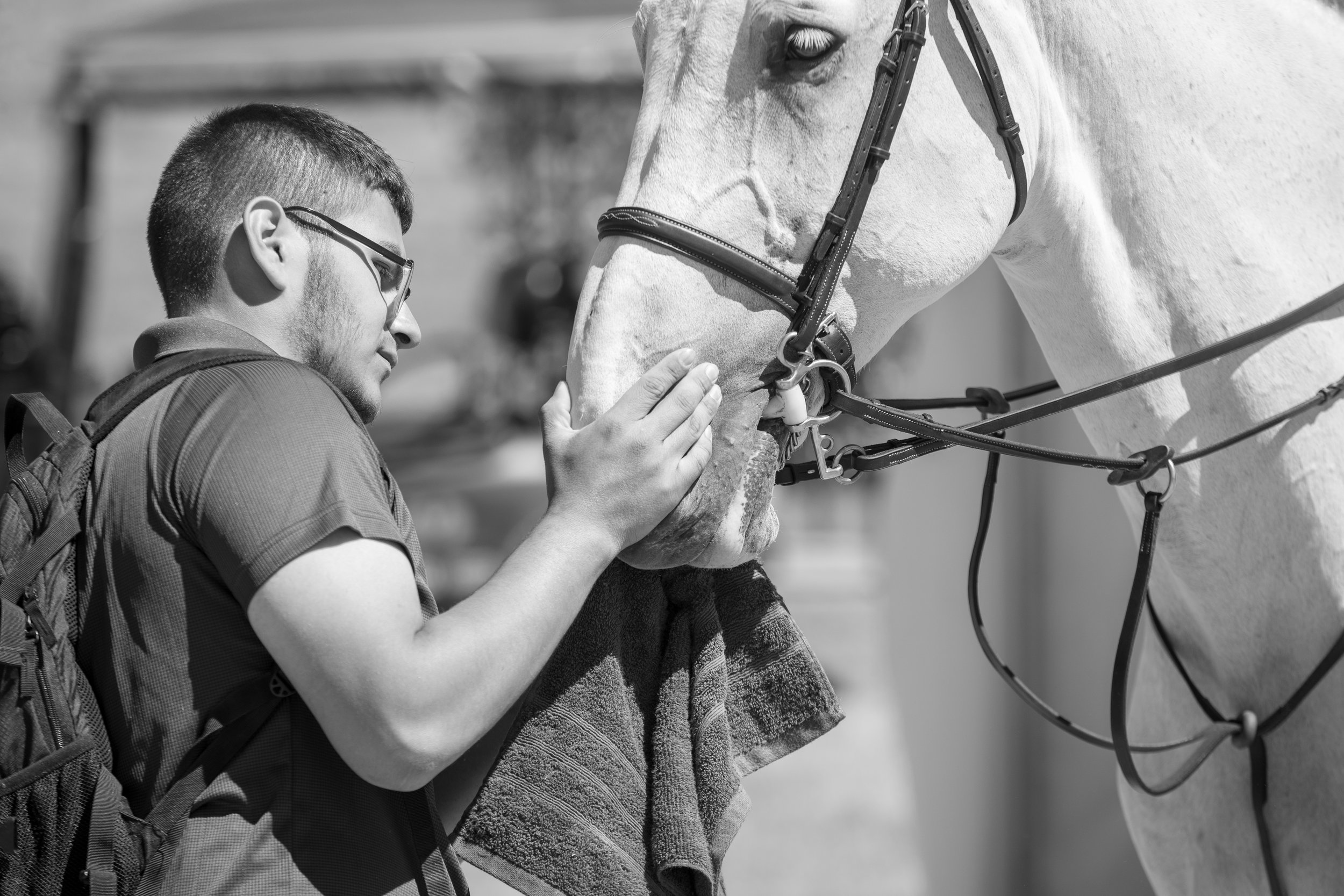 None of these horse shows would be possible without our incredible team!