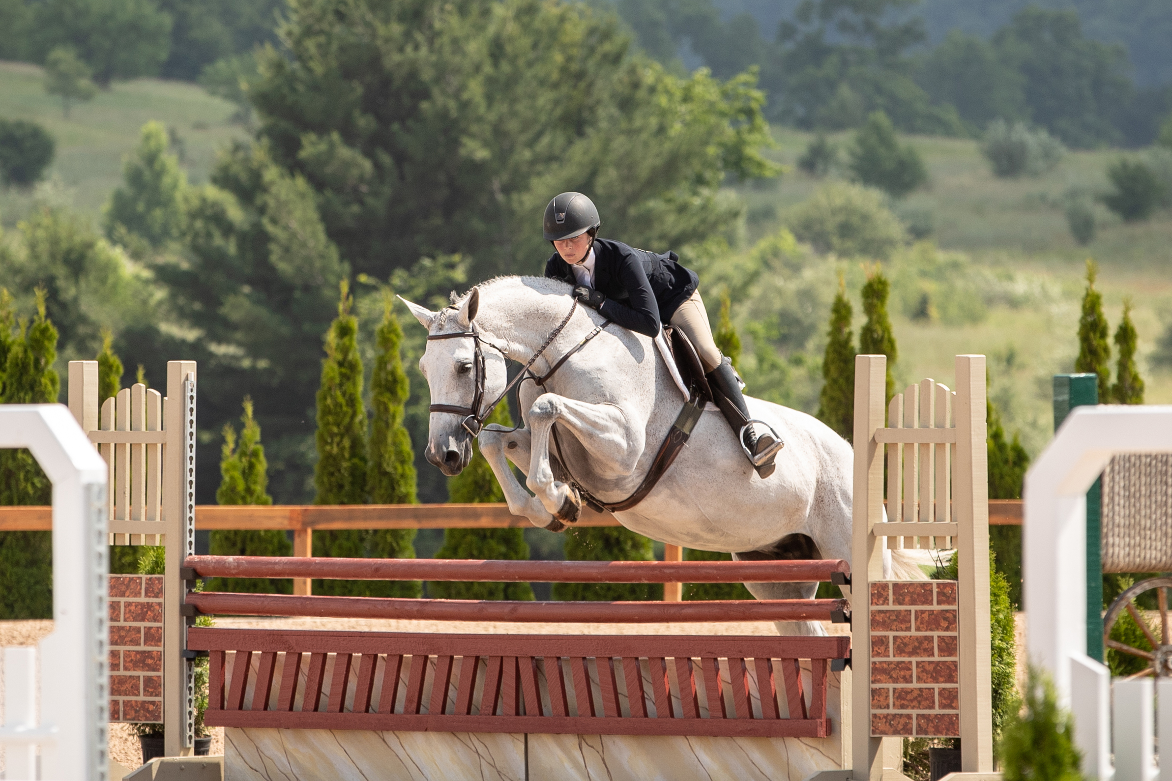 Hannah Hoch rode Cakewalk to a second place finish in the $800 Children's Hunter NAL/WIHS Classic!  Read more about Cakewalk here !