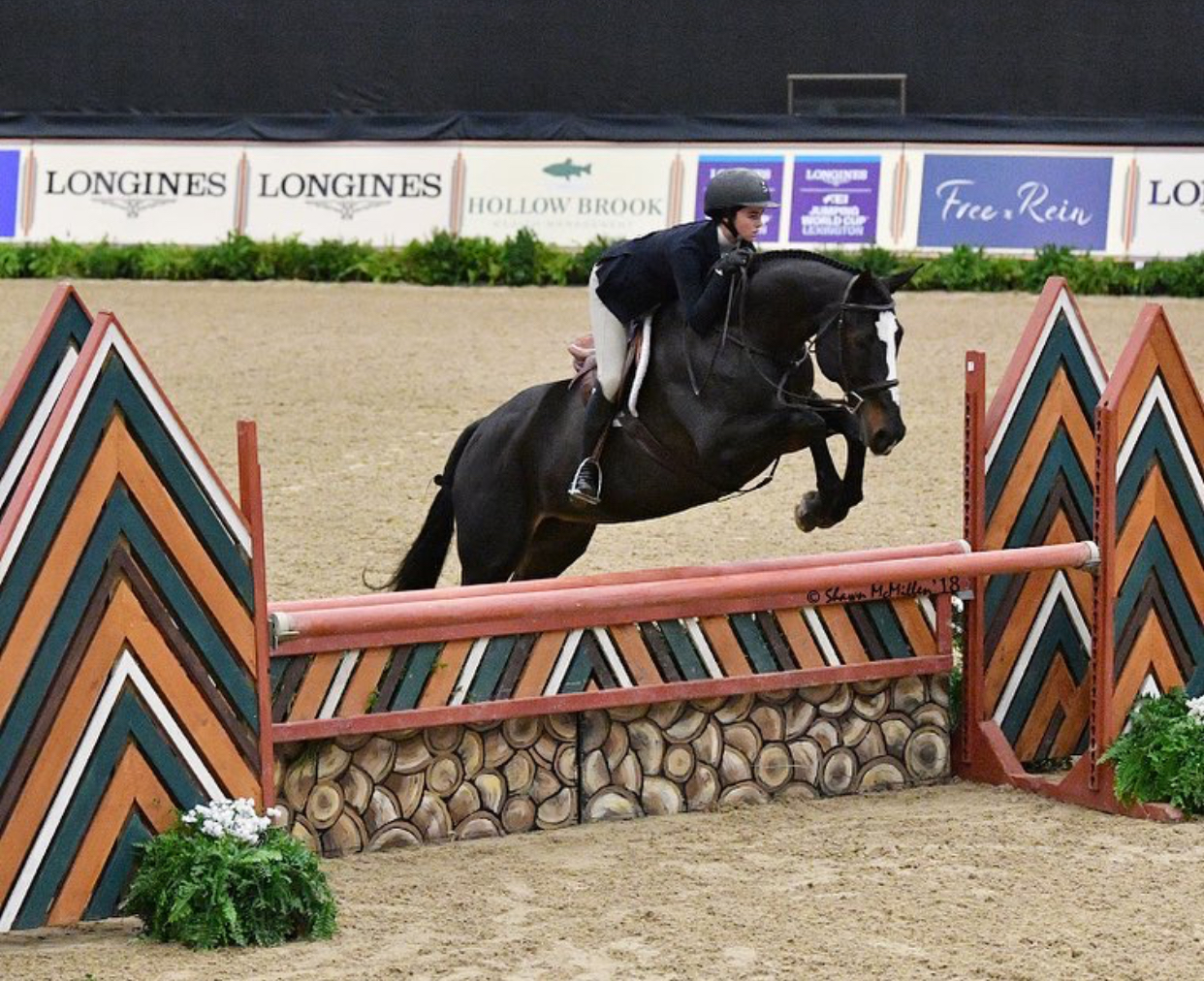 Hannah Hoch and Clear Sailing (a.k.a. Special) at the 2018 National Horse Show in Lexington, KY. Photo by Shawn McMillen Photography