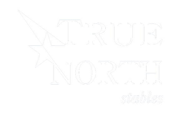True North LOGO.png