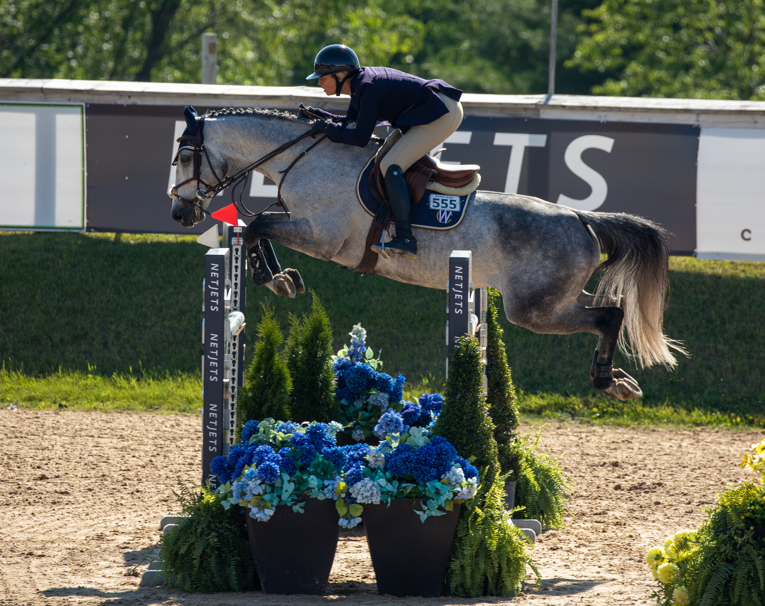Caitlyn Shiels and Incorporated. Photo by     Fine Art Horses