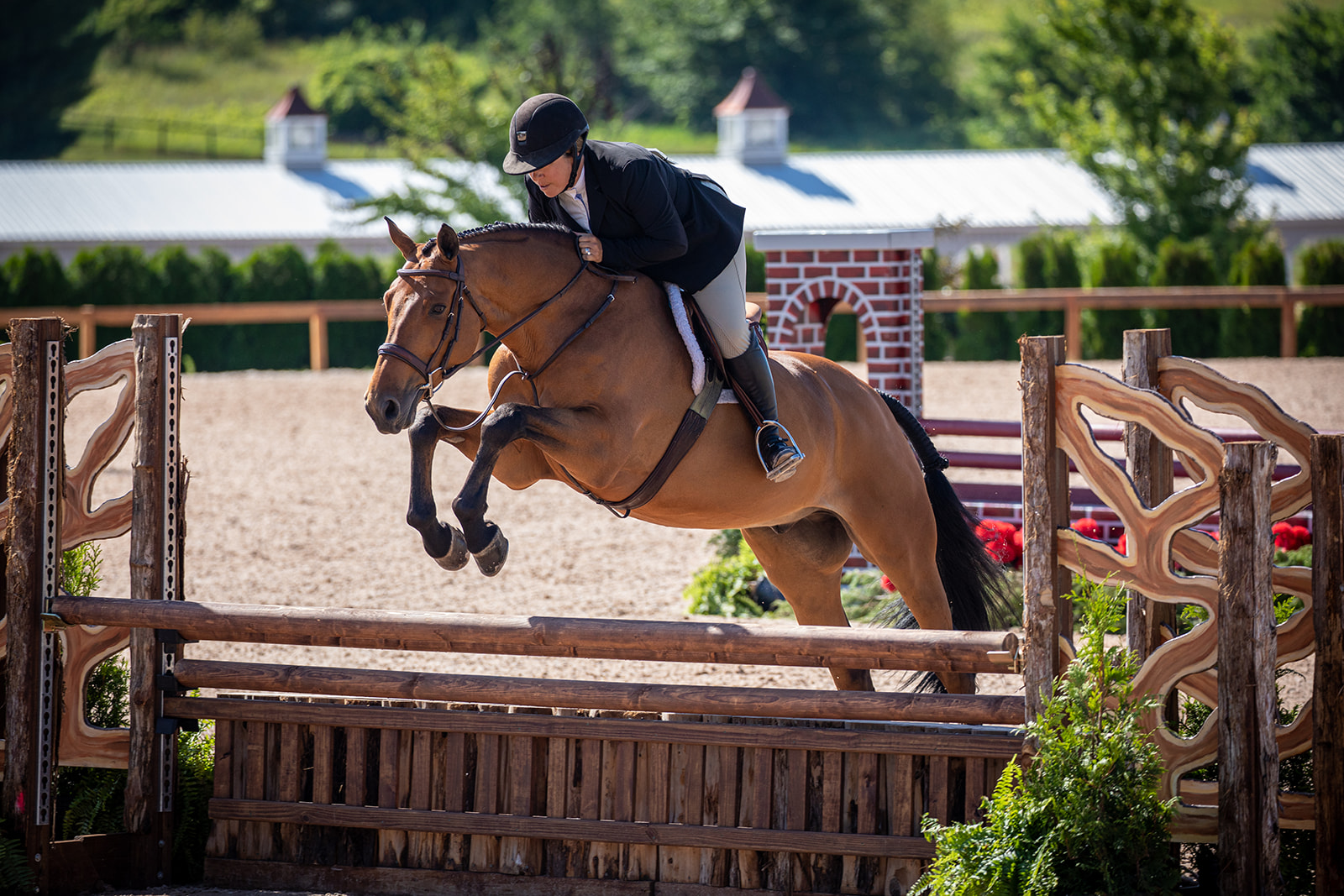 Michelle Durpetti and Lucca by Fine Art Horses_OU3A9857_websize.jpg