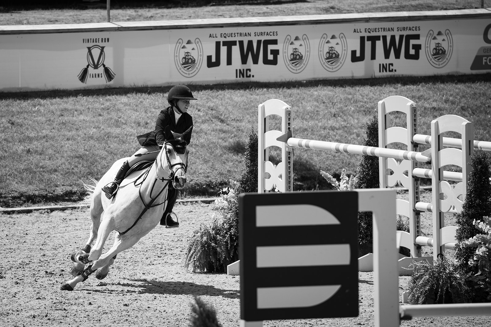 Marisa Malevitis and KT Forest. Photos by    Fine Art Horses