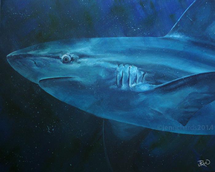 """""""Sandbar Portrait"""" - Sandbar shark, 2014 Acrylic on canvas 20 x 16 inches  AVAILABLE"""
