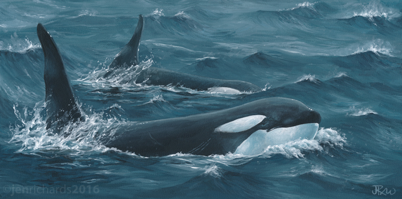 """Brothers"" - Orcas, 2016 Acrylic on gesso board 12 x 6 inches  AVAILABLE"