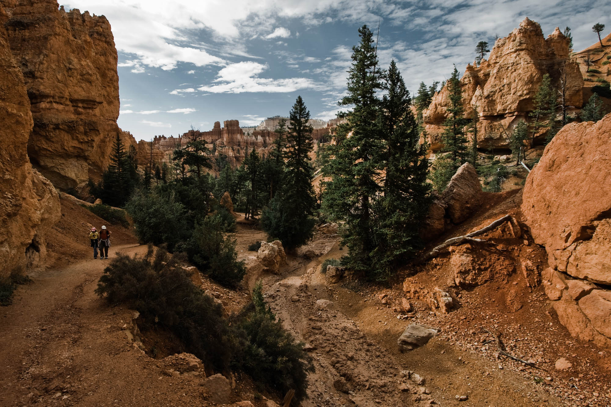 Bryce Canyon National Park, Utah Elopement