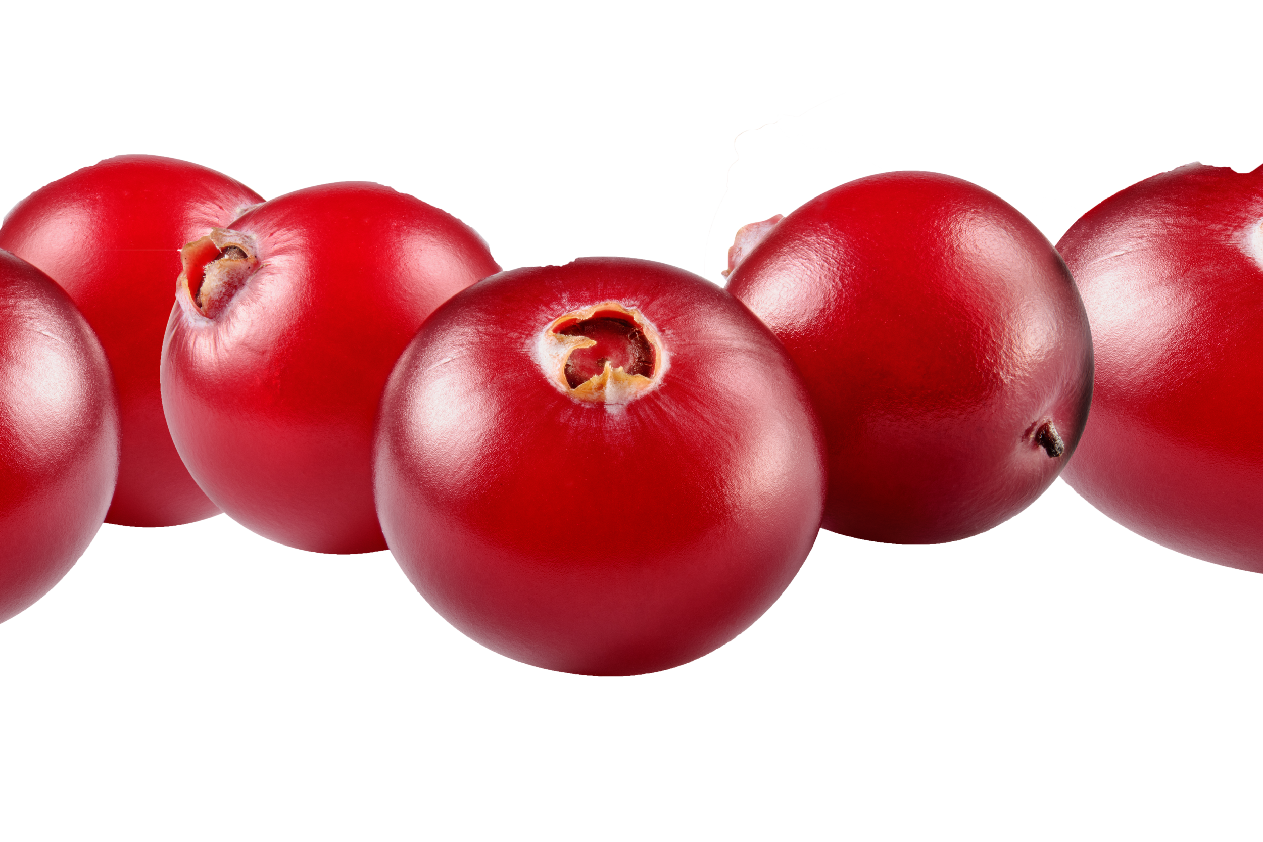 cranberries close up.png