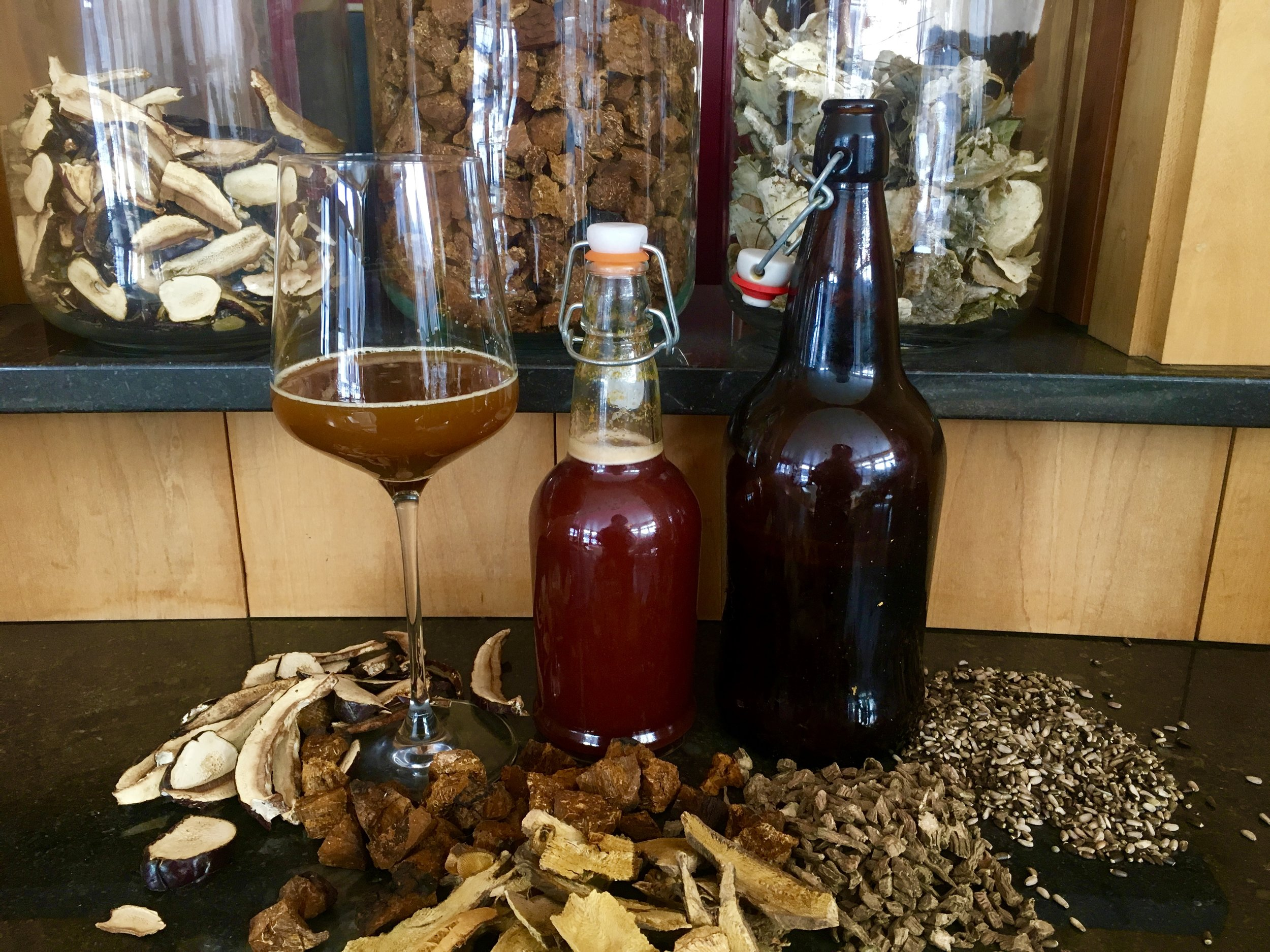This photo shows my two latest kefir-meads made with sorghum syrup instead of honey. Healing ginger-turmeric beer with a kick, and cherry cola with a kick! These two different water kefirs contain eleuthero root, milk thistle seed, *chaga, *reishi, *dandelion root, *turkey tail, *turmeric, ginger, maple, *birch, *japanese knotweed root, teasel root, *apple cider, cherry juice, *schisandra berry...amongst other ingredients. *=grown or wild-crafted at SHO.