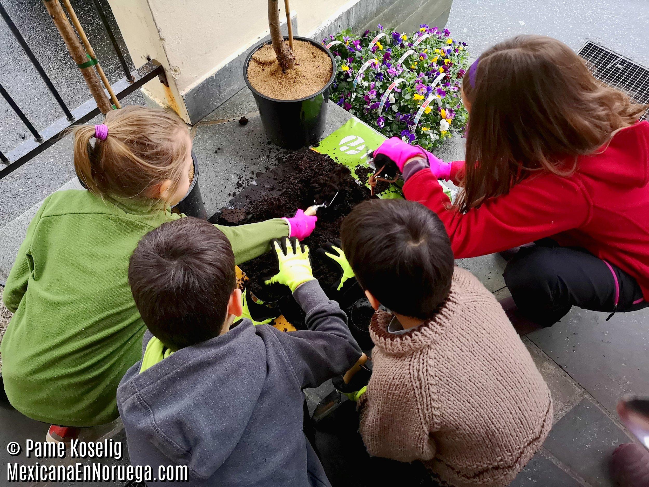 2 - Niños con la tierra _ Pame Koselig _ Mexicana en Noruega.jpg