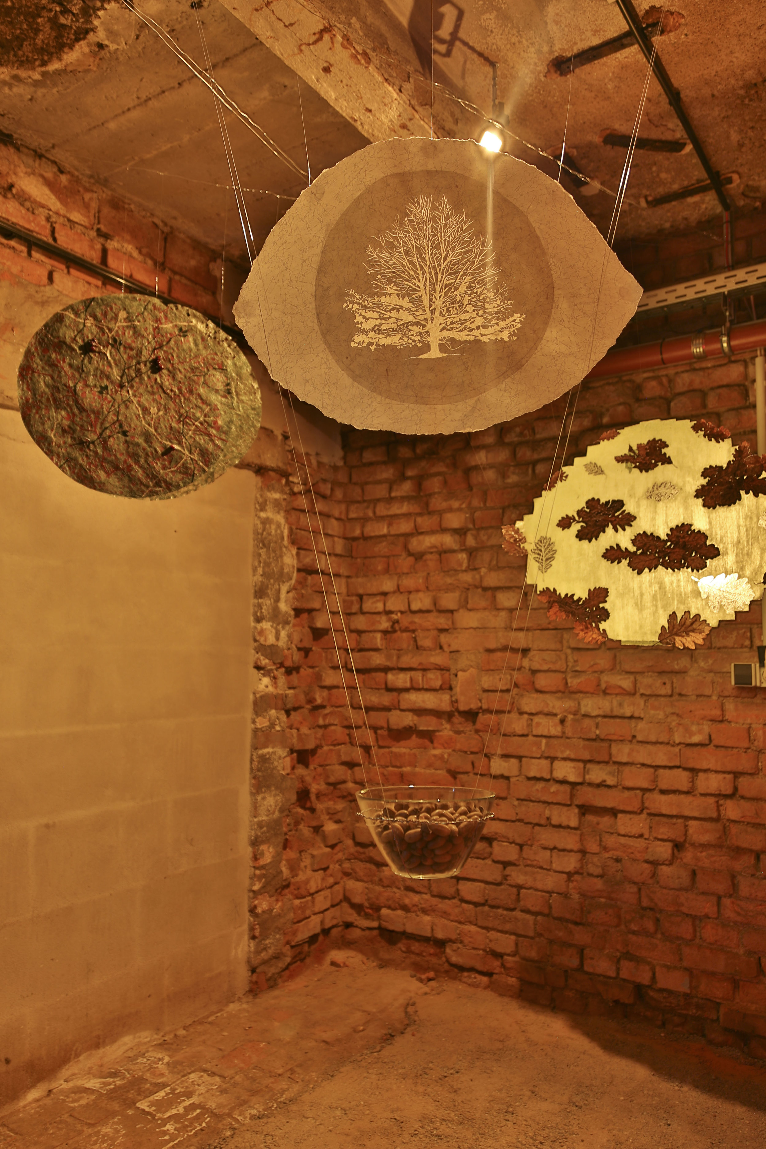 Documentation of my installation by Coffee Kang