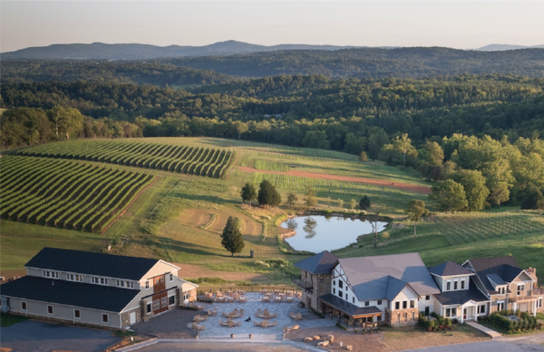 Stone Tower Winery -