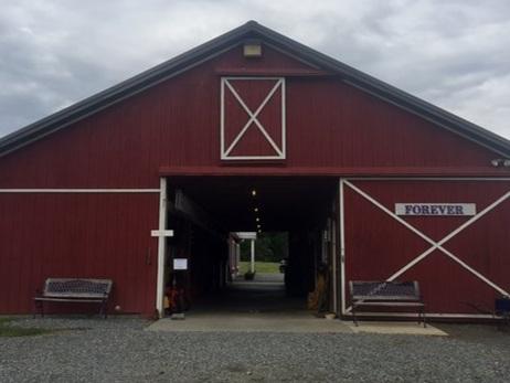 Forever Farm & Vineyards -