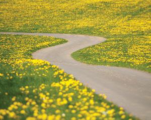 join the journey 14.jpg