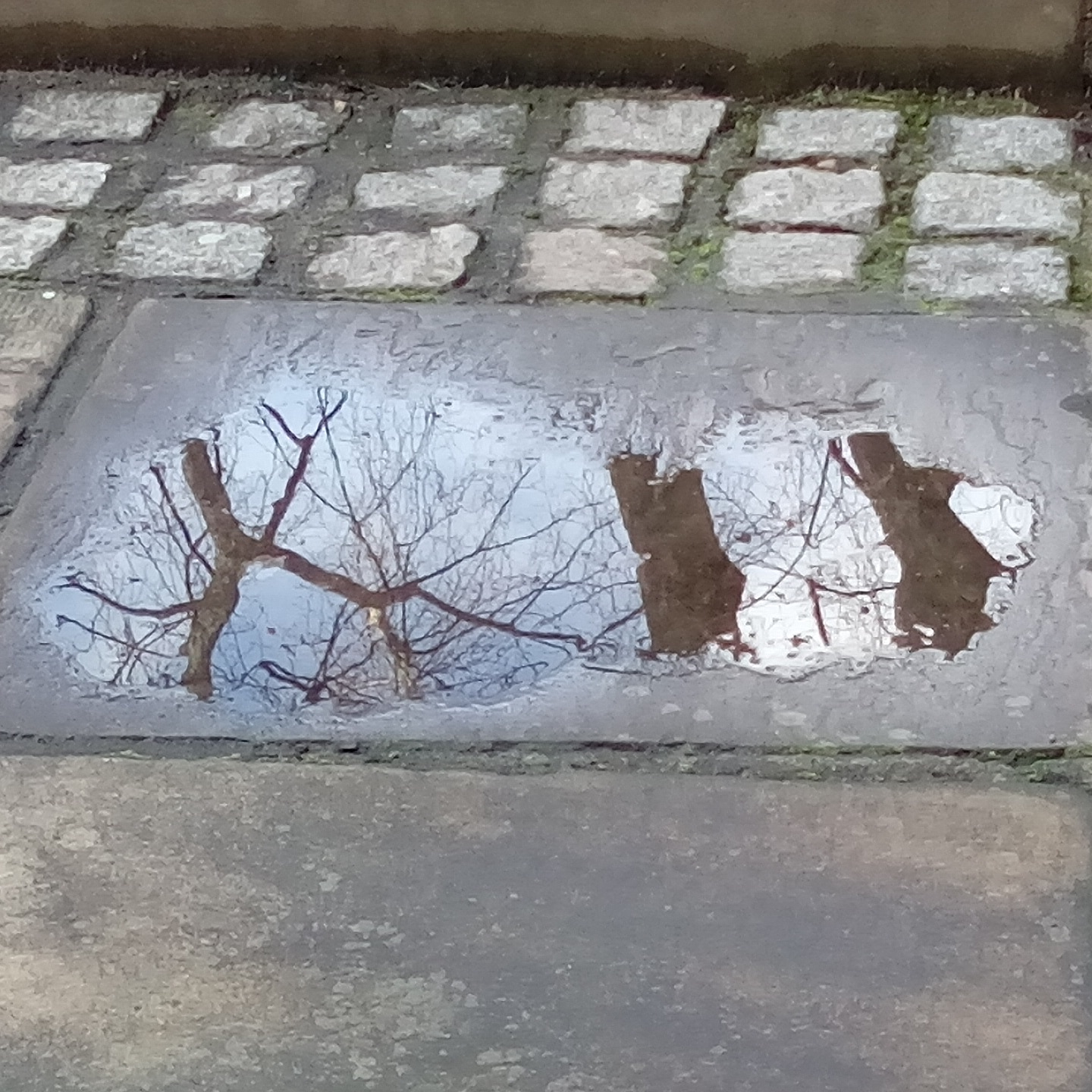 Reflections on a puddle, St John Zachary