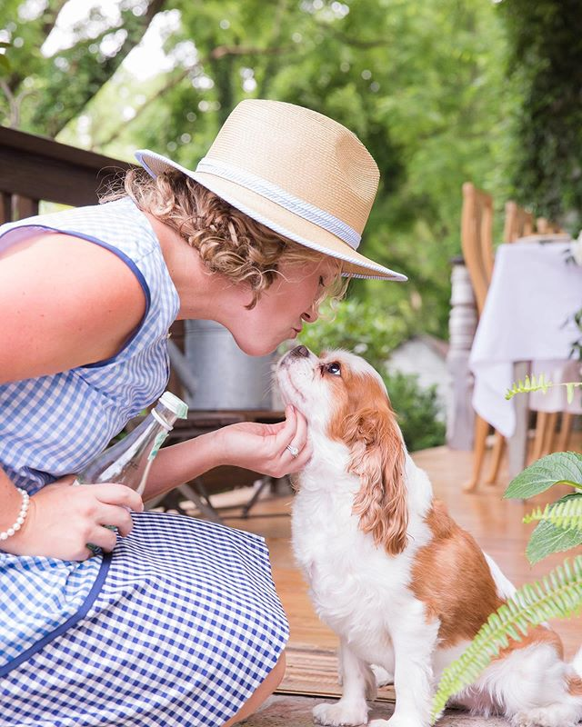 Kissing' this week goodbye!! 👋🏻👋🏻. Bring on the weekend!! Pic is from an amazing shoot for @draperjames and @katiejacobsnashville a couple of years back.☺️☺️ #southernliving #dogsofinstagram #southern #draperjames #weekendvibes