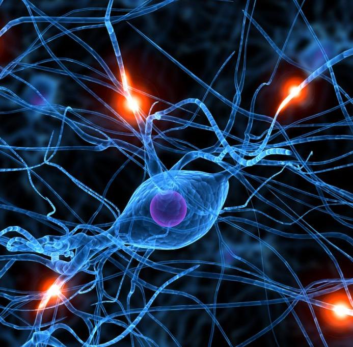 illustration-of-neurons.jpg