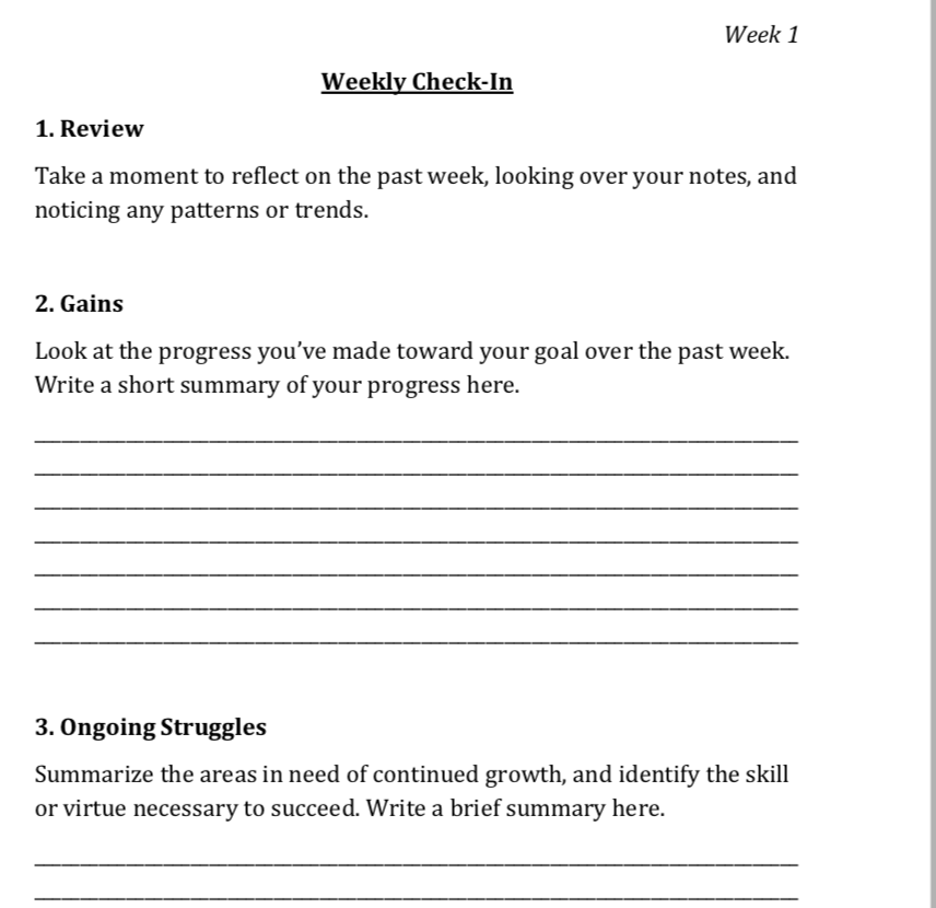 Daily Structured Journal Track Progress Measurable Weekly Reflection Goals.png