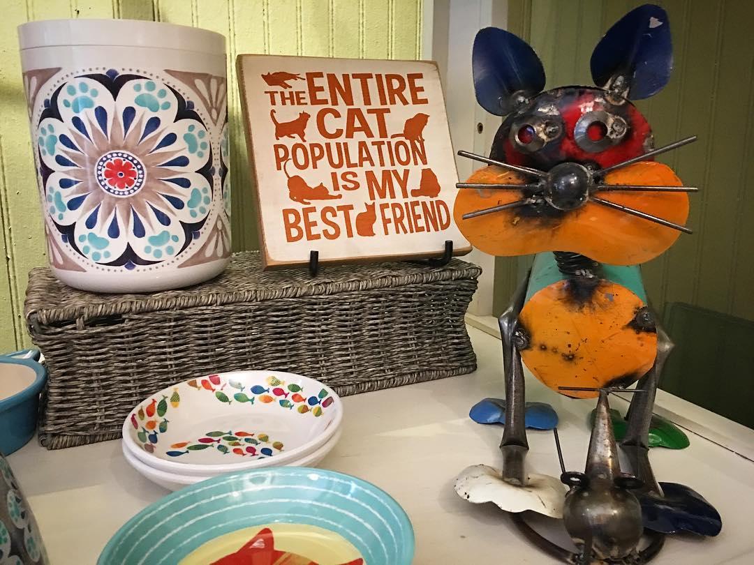 pet-merchandise-cats.jpg