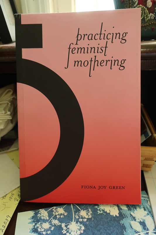 A wonderful find from an anarchist and radical bookshop,  Wooden Shoe Books & Records  in Philadelphia.