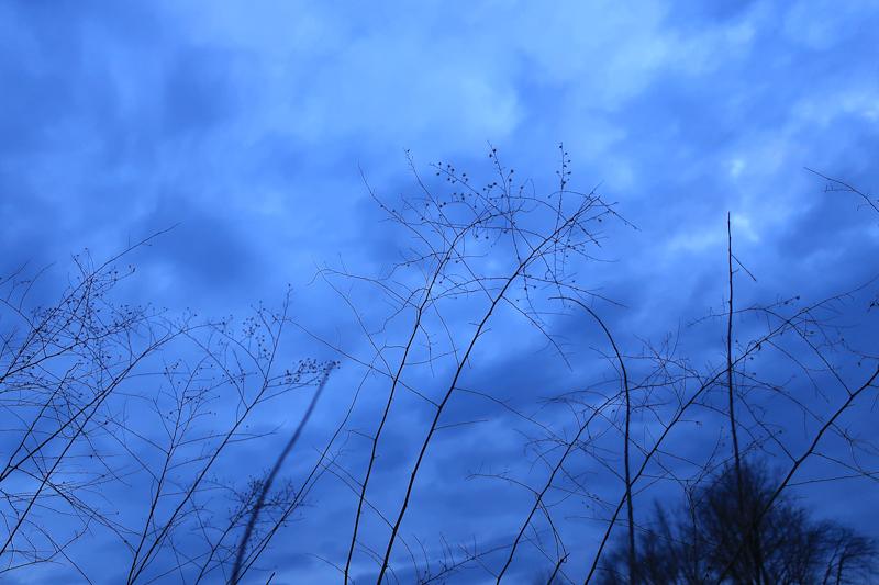 mackow_sunset-8793.jpg
