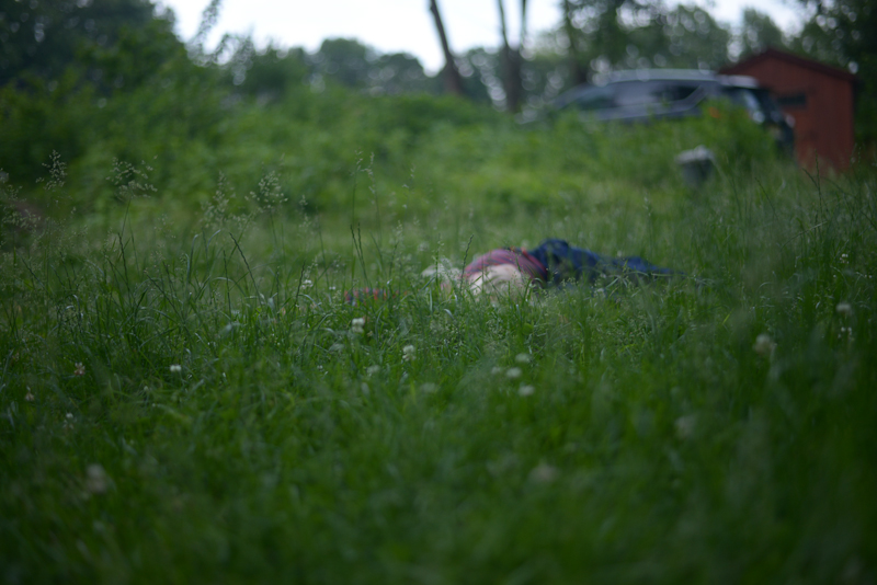 In the Grass, June 2, 2019
