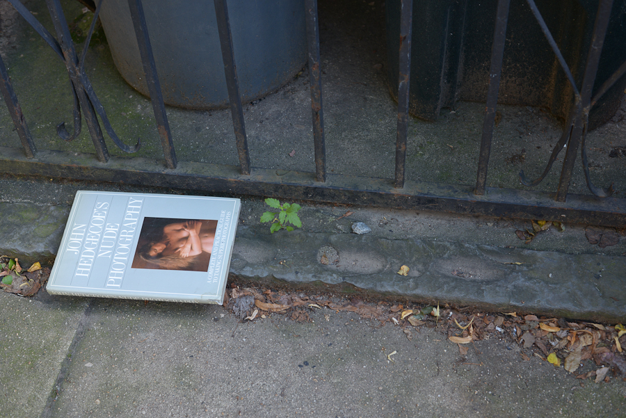 Discarded Book, Jersey City, July 1, 2019