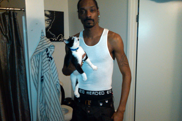 Here's Snoop Dogg with a cat - however it looks like this might be someone else's cat because it doesn't look very much like a Siamese cat