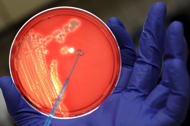 bcteria infection.jpg