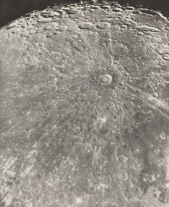 luna exhibit.jpg