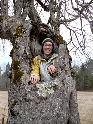 Abbey Verrier is one with an heirloom apple tree. Photo by John Bunker