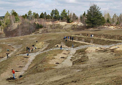 The Maine Heritage Orchard terraces on planting day, 2014.