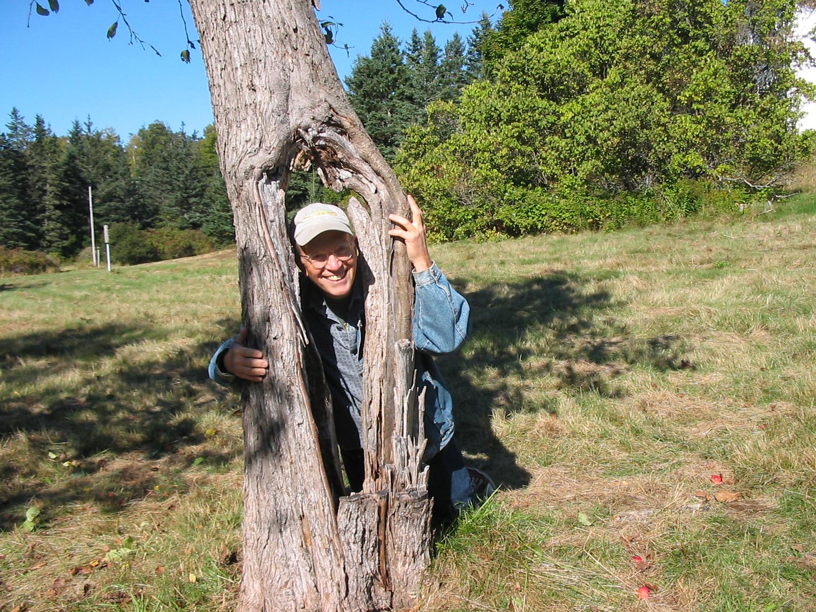 JPBHole in tree.JPG
