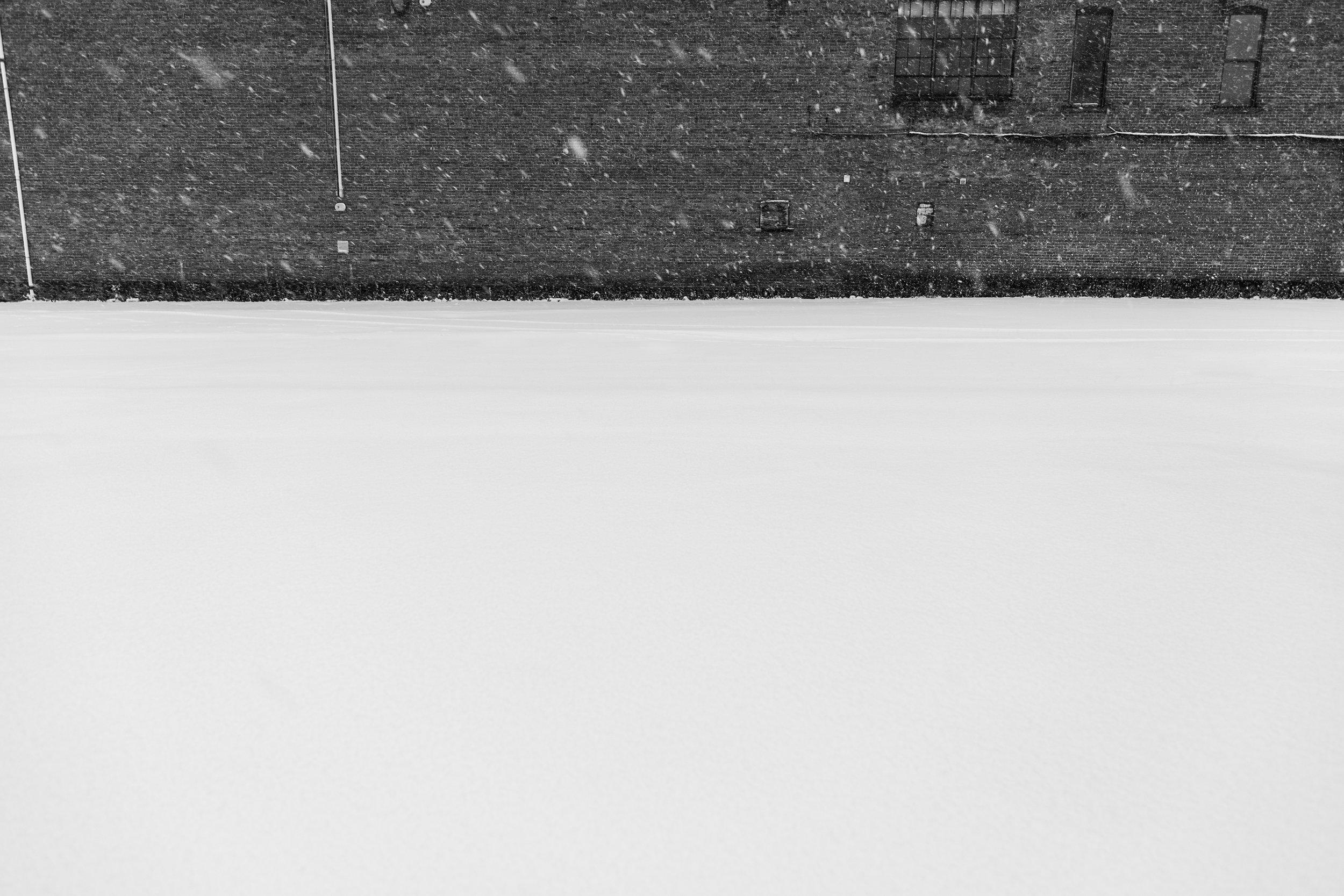 Snowy Ground Cover (web).jpg