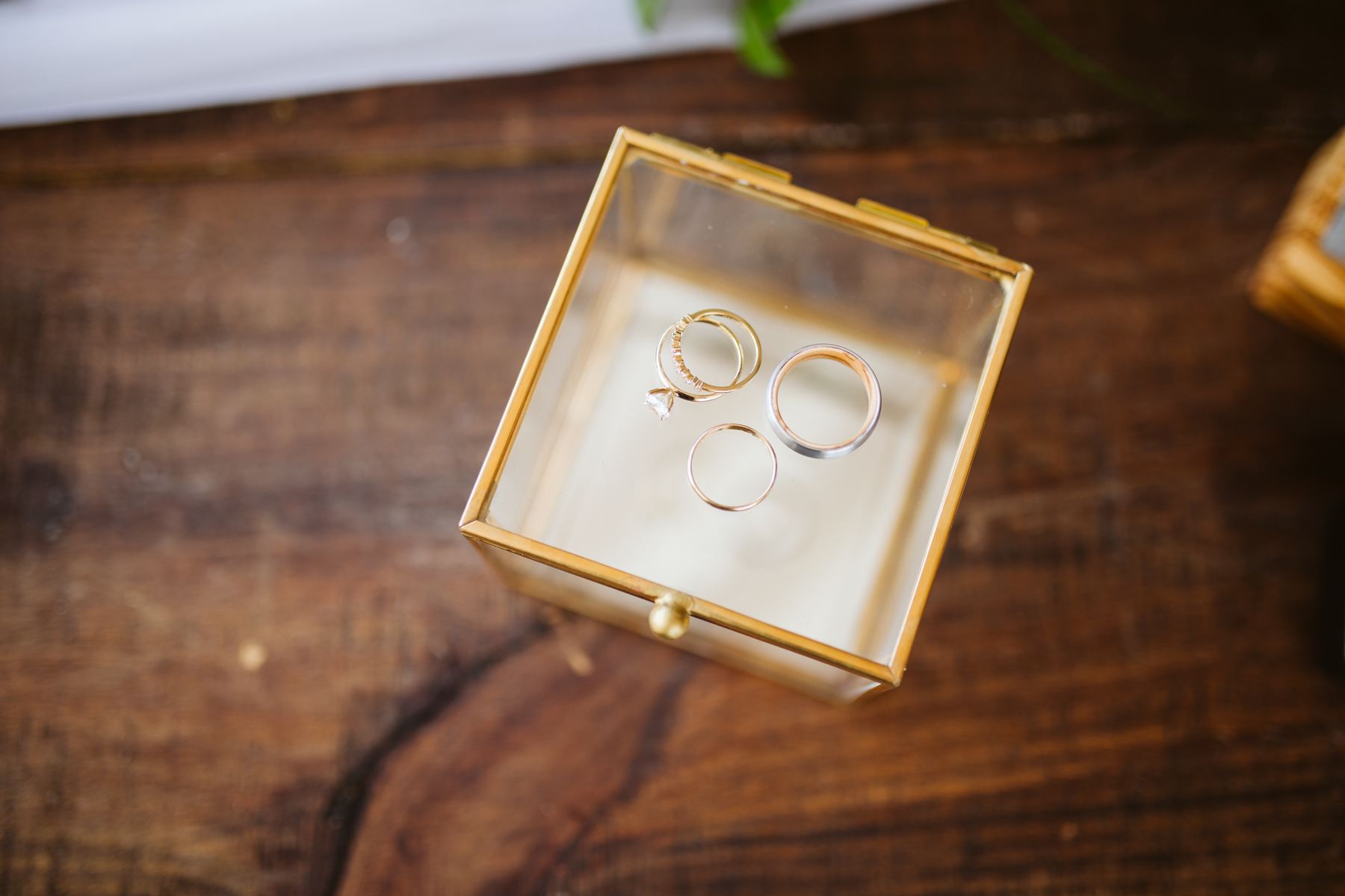 wedding rings laid out before a stables at strawberry creek wedding in Knoxville, tennessee