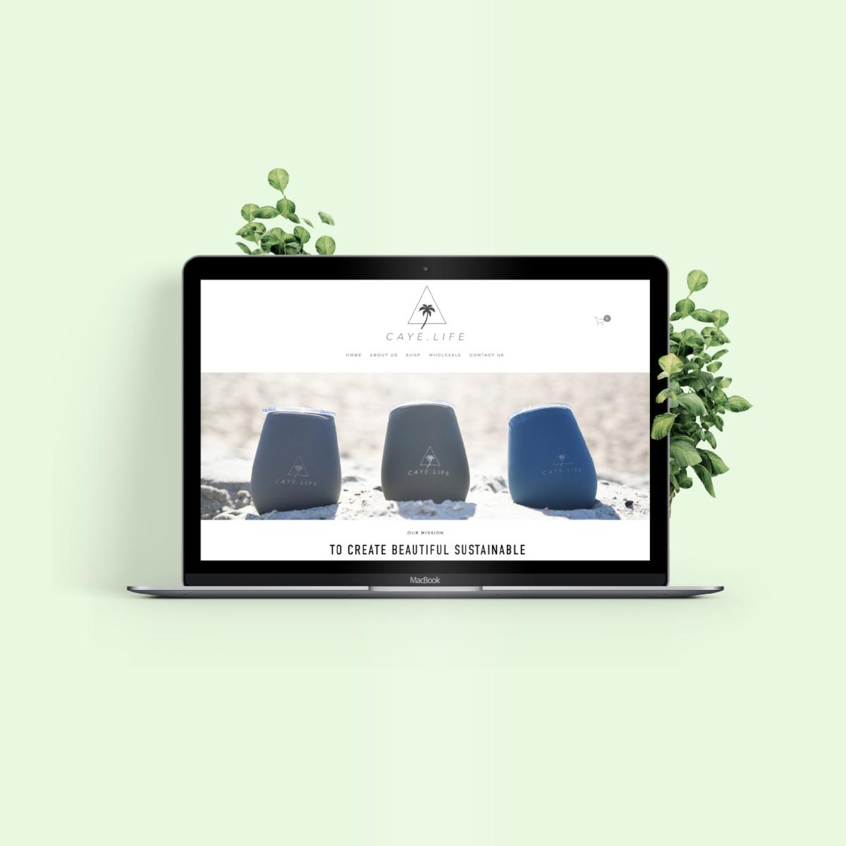 squarespace-ecommerce-setup.jpg