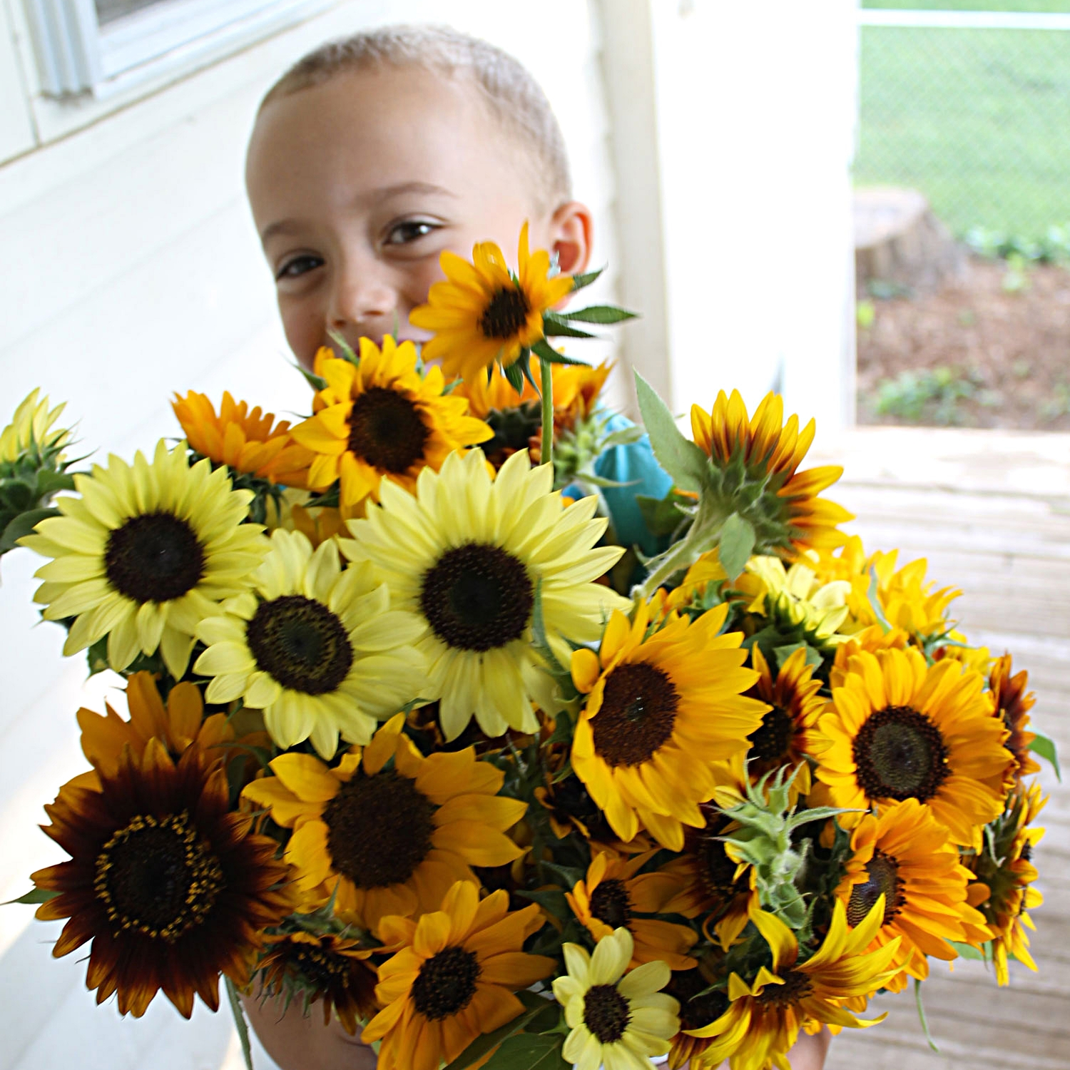 Henry holding an armful of fresh sunflowers.