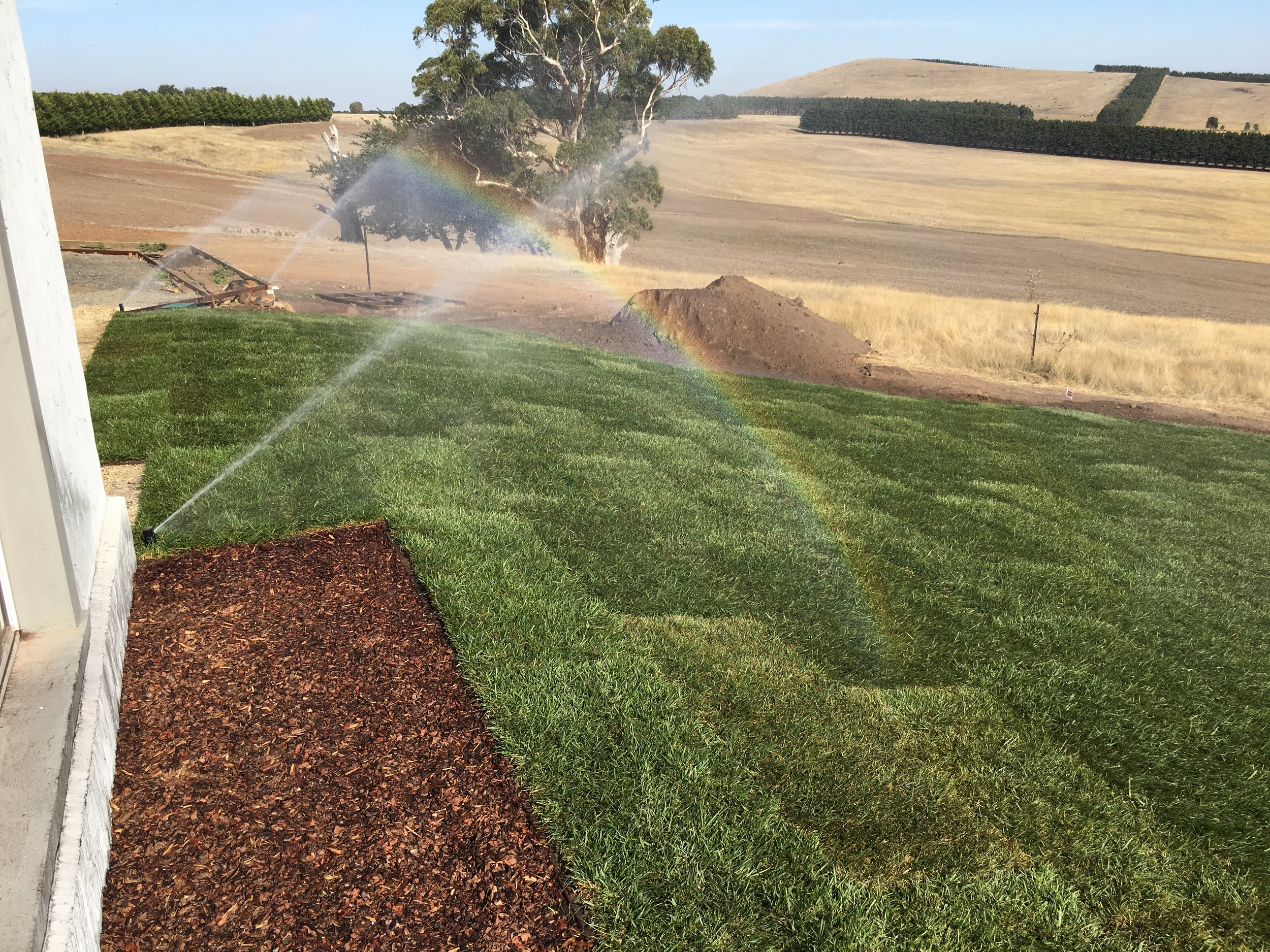 Instant turf with automated irrigation and mulched garden bed