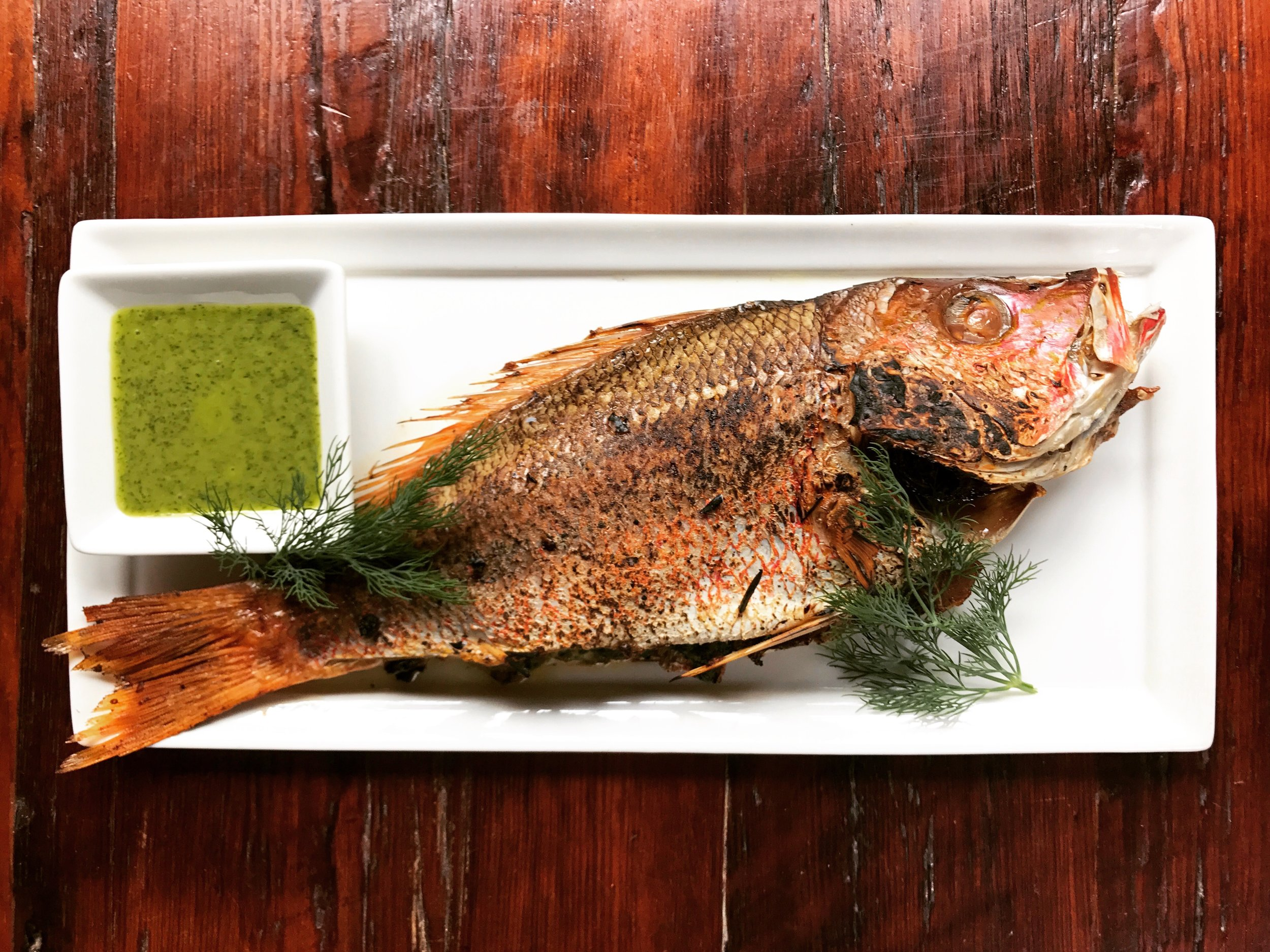 Lane Snapper Farci with Dill Sauce.jpg
