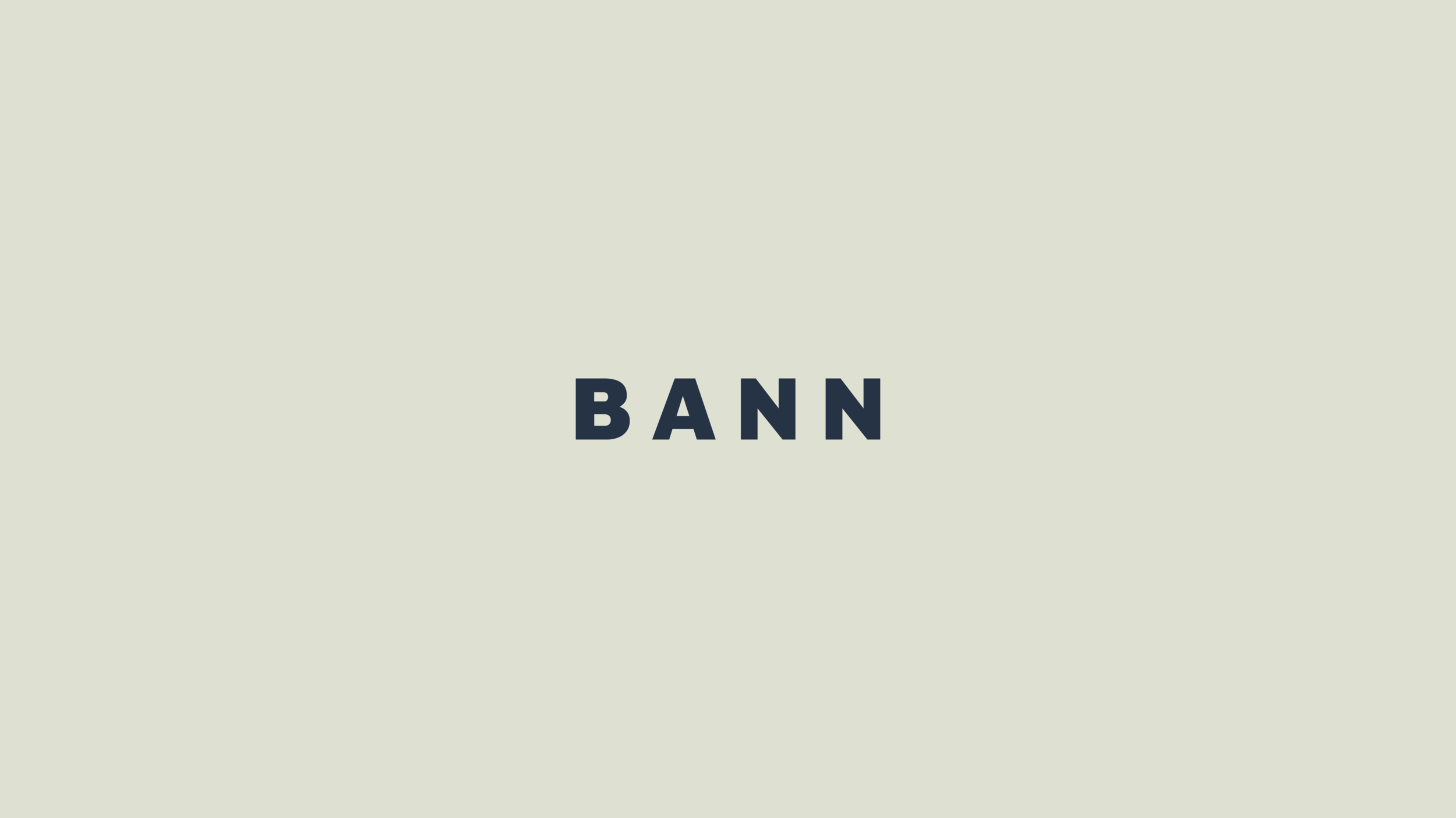 Assets-Website-Portfolio-BANN-Logo-01.png