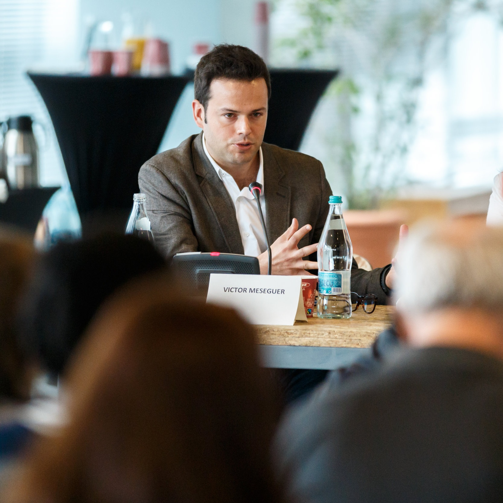 Víctor MESEGUER  Director, Social Economy Europe   Propuneri SEE pentru alegerile europene